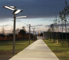sunflower-street-lighting-features-efficient-cost-effective-and-eco-friendly-city-lighting2.jpg 450×390 pixels