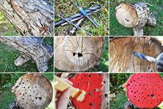 lady bug hotel! invite those ladies to  your garden