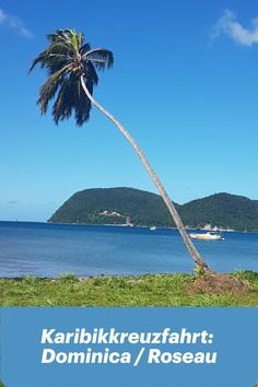 Karibikkreuzfahrt: Dominica / Roseau List Of Countries, Countries Of The World, Country, Beach, Travel, Outdoor, West Indies, Caribbean Cruise, Destinations