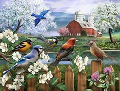 a9ef9eb0c272 Amazon.com  The Jigsaw Puzzle Factory Songbirds Spring Gathering (550 Piece)  Toy