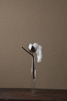 2012年1月20日(金) 綿には手をふれていません。カミの似姿のようです。 花=綿(ワタ) 器=古ガラス細瓶(20世紀)