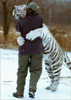 see animals are just like humans they just need some one to talk to and hug it out
