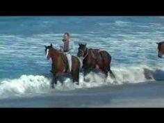 Comité Régional de Tourisme Equestre Corse.