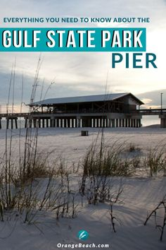 Everything You Need to Know About the Gulf State Park Pier Usa Travel Guide, Travel Usa, Travel Tips, Travel Guides, Best Family Vacations, Family Travel, Beach Vacations, Orange Beach Alabama, Romantic Weekend Getaways