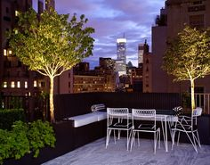 Roof garden // Plant Specialists  www.plantspecialists.com  landscape architecture terrace rooftop patio rooftop terrace urban landscaping New York City Manhattan garden Manhattan roof garden urban horticulture