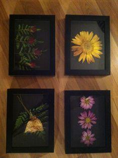 Dried Flowers in a Shadow Box Frame. Dried Flowers in a Shadow Box Frame. Flower Crafts, Diy Flowers, Flower Decorations, Flower Boxes, Flower Frame, Diy Rangement, Pressed Flower Art, Shadow Box Frames, Diy Art