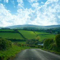 Irish Wedding Traditions and Customs