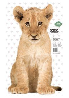 Muursticker Lion Cub, Jonge leeuw voor kinderkamer, 28 x 48 cm