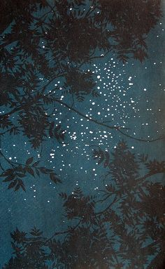 Night sky illustration