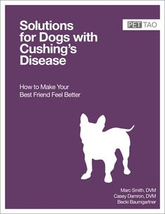 "Photo of ebook cover for ""Solutions for Dogs with Cushing's Disease"" Cushing Disease, Vet Assistant, Health Options, Ebook Cover, Diabetic Dog, Health Challenge, Natural Solutions, Pet Health, Dog Life"