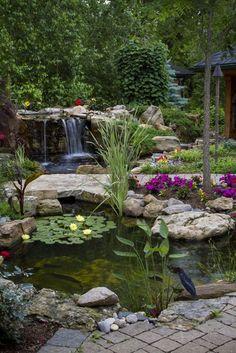 Pond and Waterfall in Suburban Backyard