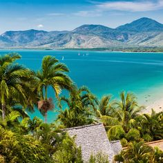 Cairns to Port Douglas drive road trip ideas. Things to do in Far North Queensland: Kuranda, Palm Cove, Daintree Rainforest and the Great Barrier Reef Great Barrier Reef, Sunshine Coast, Airlie Beach, Best Tropical Vacations, Melbourne, Sydney, Zona Colonial, Photos Voyages, Australia Travel