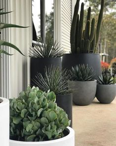 Balcony planters Balcony garden Plants Outdoor pots Garden Potted plants outdoor If its pot plants that make you happy pot up as many as you can Balcony Planters, Balcony Garden, Garden Pots, Potted Garden, Potted Plants Patio, Cactus Garden Ideas, Plants On Balcony, Pots For Plants, Walled Garden