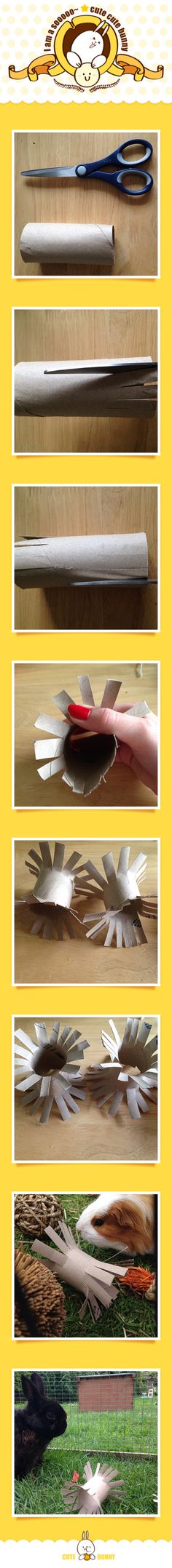 DIY Toilet roll tube bunny/ guinea pig toy!  (Cut slits on each end all the way round, make sure to leave space in the middle! Push them out and it's as simple as that!) George loves to chuck his about!