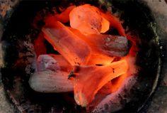 キンメもほろほろに。土佐備長炭を復活させた〈炭玄〉の熱い炭焼きストーリー|高知づくり|「colocal コロカル」ローカルを学ぶ・暮らす・旅する