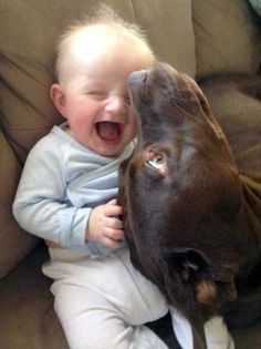 子供も犬も猫もみんな可愛い。子供とペットの仲良し写真その2 32枚:小太郎ぶろぐ