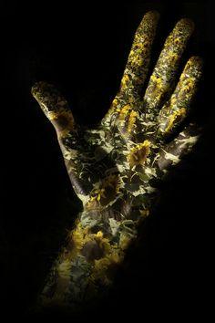 asylum-art:  Your Hands Only: Photos by Øystein Sture Aspelund ...