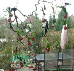 Dekoideen für den Frühling, Blumenzwiebeln mit Wachs überziehen