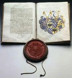 Wappenbrief. Ausgestellt von der Kaiserlichen Kanzlei in Wien für…