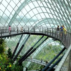 Cloud Forest .. Singapore Tourist Spots, Urban Architecture, Gardens By The Bay, Bay Area, Marina Bay, Clouds, Building, Awesome, Travel
