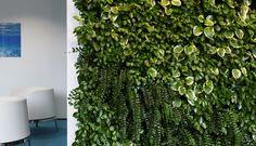 Living Flow by Green House Effect, Flow Festival 2013 Terrace Garden, Herbs, Green, Flow, Plants, House, Design, Home, Terraced Garden