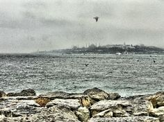 from istanbul...