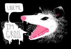 drawing animals about me My art digital art gross possum opossum – Maria Silvia Tatto Old, Opossum, Baguio, Memes, Art Inspo, Art Reference, Illustration, Cool Art, Character Design