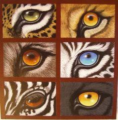 ojos de Jaguar - León - Lobo - Tigre blanco - Cebra - Pantera