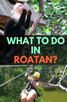 7 AMAZING THINGS TO DO IN ROATAN - Read about the best things to do in Roatan on the blog with recommendations and a travel guide!