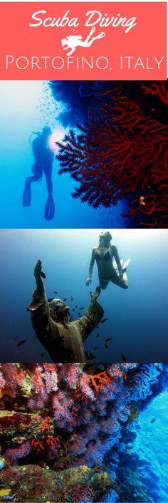 Scuba diving in Portofino Marine Protected Area - World Adventure Divers