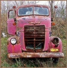 Rust & Pink..perfect!