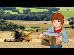 Learn how to plant and grow wheat and other cereal grains. Buy Wheat Seed: http://www.groworganic.com/seeds/bulk-seeds/wheat-seed.html Watch More Videos: htt...