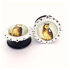 1 inch Owl Cameo Plugs by FearlessPlugs on Etsy, $20.00