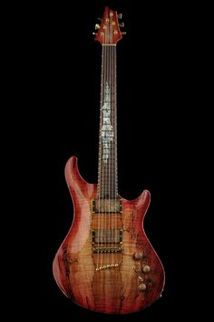 Warrior Guitar Dran Michael Series