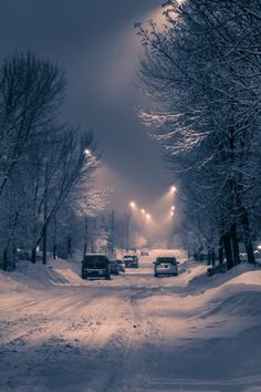 Find images and videos about winter, night and snow on We Heart It - the app to get lost in what you love. Winter Szenen, Winter Love, Winter Magic, Winter Night, Winter Season, Snowy Day, Snow Scenes, Winter Pictures, Winter Beauty