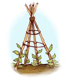 Vertical Gardening - Green Education Foundation | GEF | Sustainability Education