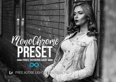 Free Monochrome Preset
