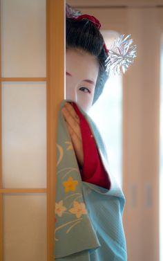 "gaaplite: "" 2017 舞妓 宮川町 ふく乃さん 2017 maiko, miyagawachô, Fukuno """