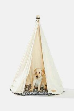 Growler Goods Saguaro Dog Tent! My dog needs one of these lol