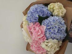 #hydrangea #hortensii #hydrangeabouquet #summerflowers Hydrangea Bouquet, Summer Flowers, Hanukkah, Floral Wreath, Wreaths, Decor, Floral Crown, Decoration, Door Wreaths