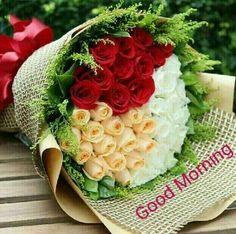 The Most Beautiful Videos & llike Him Good Morning Massage, Good Morning Good Night, Happy Birthday Flower, Rose Of Sharon, Special Flowers, Rose Cottage, Morning Greeting, Beautiful Roses, Fresh Flowers