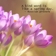 A kind word is like a spring day - Russian proverb.