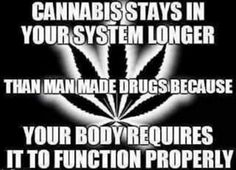 Food for thought #420life