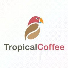 Logo Design of a coffee parrot made from a coffee bean and a tropical parrot animal mascot For Sale On StockLogos | Tropical Coffee logo