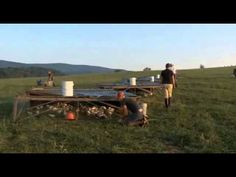 ▶ Joel Salatin's Chicken Tractor - YouTube