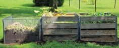 Le compost : « l'or brun » du jardinier - Blogue Kangalou