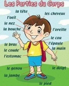 Are you learning French? The parts of the body are important French vocabulary words for beginners and advanced speakers alike! French Language Lessons, French Language Learning, French Lessons, French Flashcards, French Worksheets, French Teaching Resources, Teaching French, French Body Parts, Basic French Words