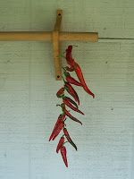 A Working Pantry: Drying Cayenne Pepper