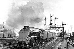 Diesel Locomotive, Steam Locomotive, Steam Trains Uk, Rail Train, Old Trains, British Rail, Sight & Sound, Steam Engine, Dieselpunk