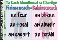 Every noun in Gaeilge is Masculine or Feminine the man / the woman the donkey / the weather the priest / the street Irish Language, Classroom Decor, Grammar, Ireland, Donkey, Priest, Education, School, Feminine